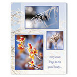 Season's Beauty Unpersonalized Card Set of 20
