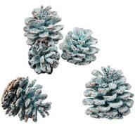 Color Pine Cones Refill