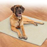 Self-Warming Pet Blanket