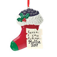 "Personalized ""Santa, I Can Explain"" Ornament"