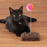 Cat Toy Punch Ball