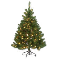 4.5' Pre-lighted Oregon Fir