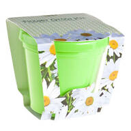 Daisy Seed Starter Kit