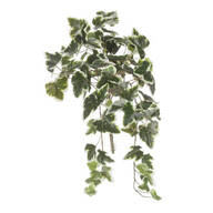 Ivy Hanging Stem by OakRidge Outdoor™