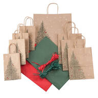 40-Pc. Cardinal in Evergreen Gift Bag Set