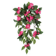 Impatiens Hanging Stem by OakRidge™ Outdoor