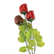 Madelaine® Milk Chocolate Rose