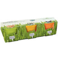 3-Pack Mini Organic Cat Grass Grow Kits
