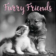 Furry Friends Wall Calendar
