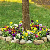 Flower Mat, Perfect Pansies