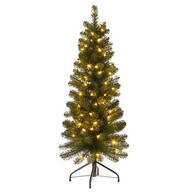 4-Ft. Pre-Lit Frasier Tree by Holiday Peak™