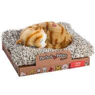 Mini Perfect Petzzz® Orange Tabby