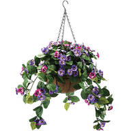 Fully Assembled Pansy Hanging Basket by OakRidge™