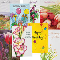 All Occasion Cards Value Pack of 24