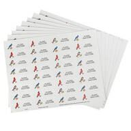 Bird Address Labels - Set of 250