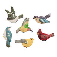 Songbird Magnets, Set of 6