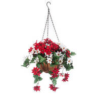 Fully Assembled Mini Poinsettia Hanging Basket by Oakridge™