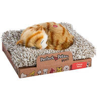 Mini Perfect Petzzz® Orange Tabby