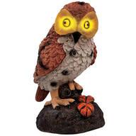 Hooting Garden Owl