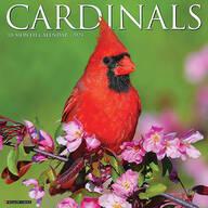 Cardinals Wall Calendar